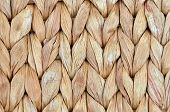 image of twist  - Twisted straw background from aquatic hyacinth close up - JPG