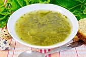pic of sorrel  - Soup of green nettles - JPG