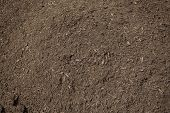 image of rich soil  - Close up view of rich - JPG