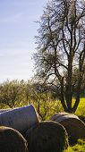 picture of hay bale  - Hay bales shot on height - JPG