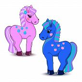 pic of pony  - Cute little pink and blue pony isolated on a white background - JPG