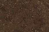 pic of humus  - dry organic garden soil background with small wood chips - JPG