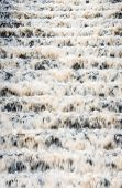 stock photo of h20  - Water from a drinking water supply reservoir cascading down a set of concrete steps towards the treatment plant - JPG