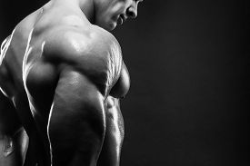 stock photo of shoulder muscle  - Bodybuilder showing his back and biceps muscles personal fitness trainer - JPG