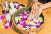Woman Hands With A Bowl Of Aroma Spa Water Salt poster