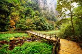 Yellow Wooden Bridge Over Mountain River Among Woods And Rocks poster