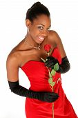 pic of african american hair styles  - girl in red gown smelling a rose isolated on white in vertical format - JPG
