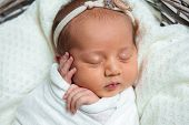 Sleeping Newborn Baby In A Wrap On White Blanket. Beautiful Portrait Of Little Child Girl 10 Days poster