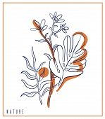 Hand Drawn Card Sketch Style Wild Flowers . Line Nature Style,drawing Flora,hand Drawn Botany. Vecto poster