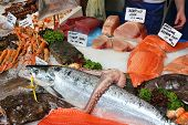 Sea Food At London Borough Market, Uk. poster