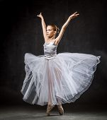Beautiful Young Ballerina Is Dancing In The Studio On A Dark Background. A Little Dancer. Ballet Dan poster
