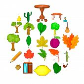 Fallen Foliage Icons Set. Cartoon Set Of 25 Fallen Foliage Vector Icons For Web Isolated On White Ba poster