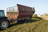 Making Silage Stocks