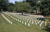 foto of arlington cemetery  - Hillside covered in graves at the Arlington National cemetery in Virginia - JPG
