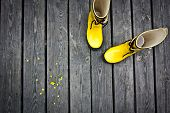 stock photo of work boots  - Two yellow boots with yellow flowers beside - JPG