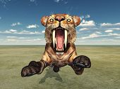 image of saber tooth tiger  - Computer generated 3D illustration with the Smilodon - JPG