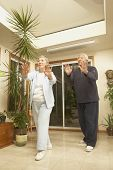 stock photo of tai-chi  - Senior couple doing Tai Chi indoors - JPG