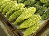 image of bitter gourd  - A row of bitter gourds at the vegetable market - JPG