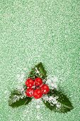 stock photo of aquifolium  - European Holly  - JPG