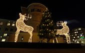 foto of rudolph  - Two raindeer made of light posing in front of a christmas tree - JPG
