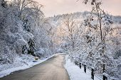 pic of icy road  - Scenic winter road through icy forest covered in snow after ice storm and snowfall - JPG
