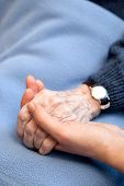 image of holding hands  - An old handing holding a young hand. Shallow depth of field with focus on the hands.