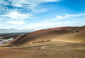 stock photo of caravan  - Caravan of camels in the desert on Lanzarote in the Canary Islands - JPG