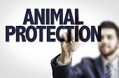 picture of animal cruelty  - Business man pointing the text - JPG