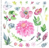 image of indigo  - Collection of watercolor floral design elements in vintage style - JPG