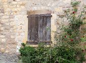 picture of quaint  - Flower bushes surround shutters on a quaint French building - JPG