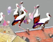 foto of stork  - PASTEL AND WATERCOLOR PAINTING OF STORKS WITH BABIES - JPG