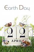 picture of grass bird  - Earth Day April 22 Concept with vintage wood calendar and small birds and fern on grass background - JPG