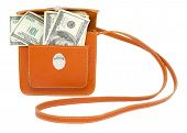 stock photo of sling bag  - 100 US dollar bills in a brown handbag - JPG