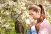 Sneezing young girl with nose wiper among blooming trees in park poster