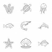 Water Wildlife Icons Set. Outline Set Of 9 Water Wildlife Icons For Web Isolated On White Background poster