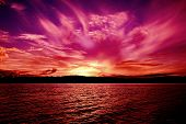 Spectacular Vivid Pink Magenta Cissus Cloudy Ocean Sunset With Water Reflections.  Photographed In L poster