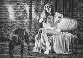 Sensual Woman Call Dog. Girl In Fashionable Dress, High Heel Shoes On Sofa. Pet, Companion, Friend,  poster