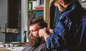 Barber With Clipper Trimming Hair On Temple Of Client. Hipster Client Getting Haircut. Hipster Lifes poster