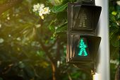 Pedestrian Signals On Traffic Light Pole. Pedestrian Crossing Sign For Safe To Walk In The City. Cro poster