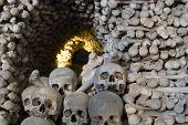pic of head femur  - Skulls blocking the entrance to a tunnel made of bones - JPG