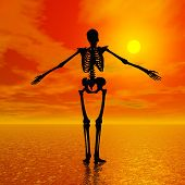 foto of head femur  - Shadow of a skeleton standing on the water and facing the sun by red sunset - JPG