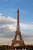 National Landmark Eiffel Tower Through Trees In Paris France poster
