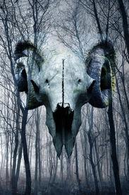 stock photo of wraith  - Demonic occult goat skull materialising in misty atmospheric haunted forest - JPG