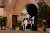 stock photo of hacienda  - A Mexican cowboy was galloping his horse into the hacienda courtyard in Mexico - JPG