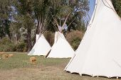 picture of teepee  - Sioux teepees in the Yellowstone Valley of Montana - JPG