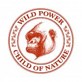 stock photo of ape  - Ape head logo in red and white - JPG