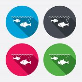 picture of long-fish  - Fish in water sign icon - JPG