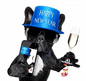 foto of french toast  - french bulldog dog ready to toast for new years eve taking a selfie or photo isolated on white background - JPG