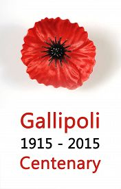 foto of lapel  - Australian Gallipoli Centenary WWI April 1915 tribute with red poppy lapel pin badge on white background with sample text - JPG
