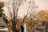picture of yellow castle  - beautiful stylish elegant charming loving couple in the castle - JPG